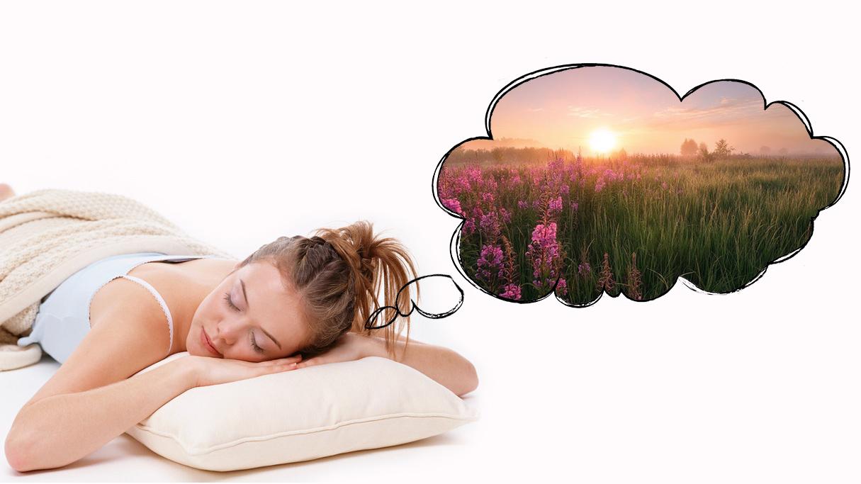 Сон под утро со вторника на среду значение
