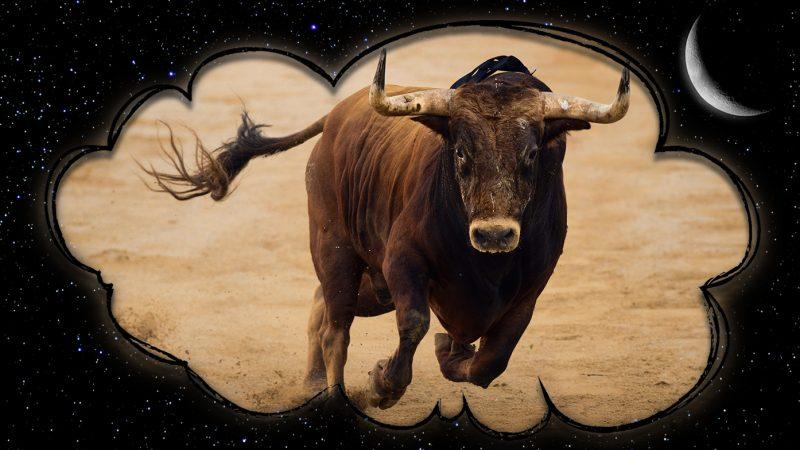 Сонник: Бык. К чему снится бык?