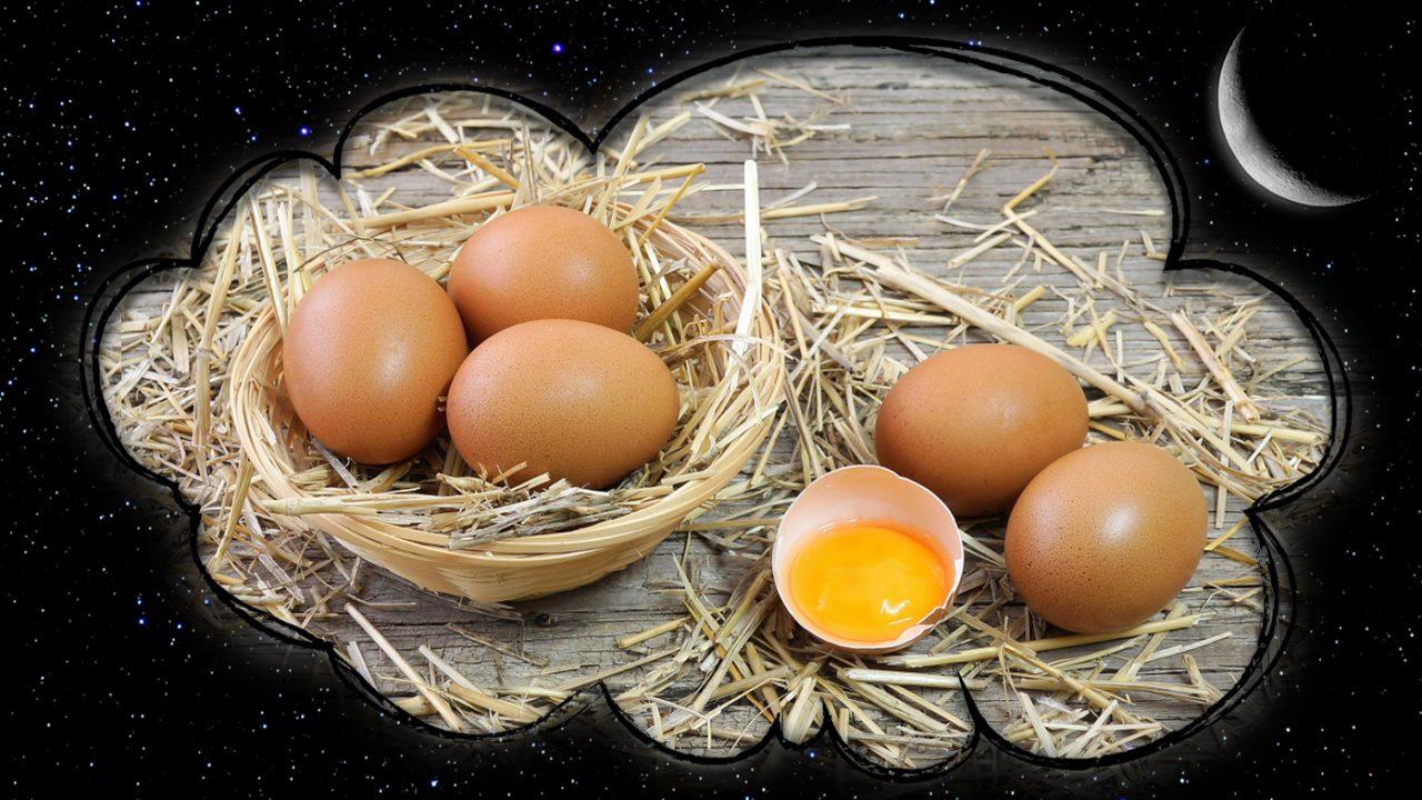 К чему снится яйцо куриное