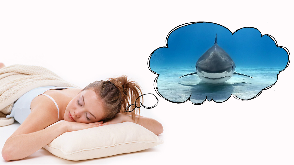 Сон с плавающими акулами