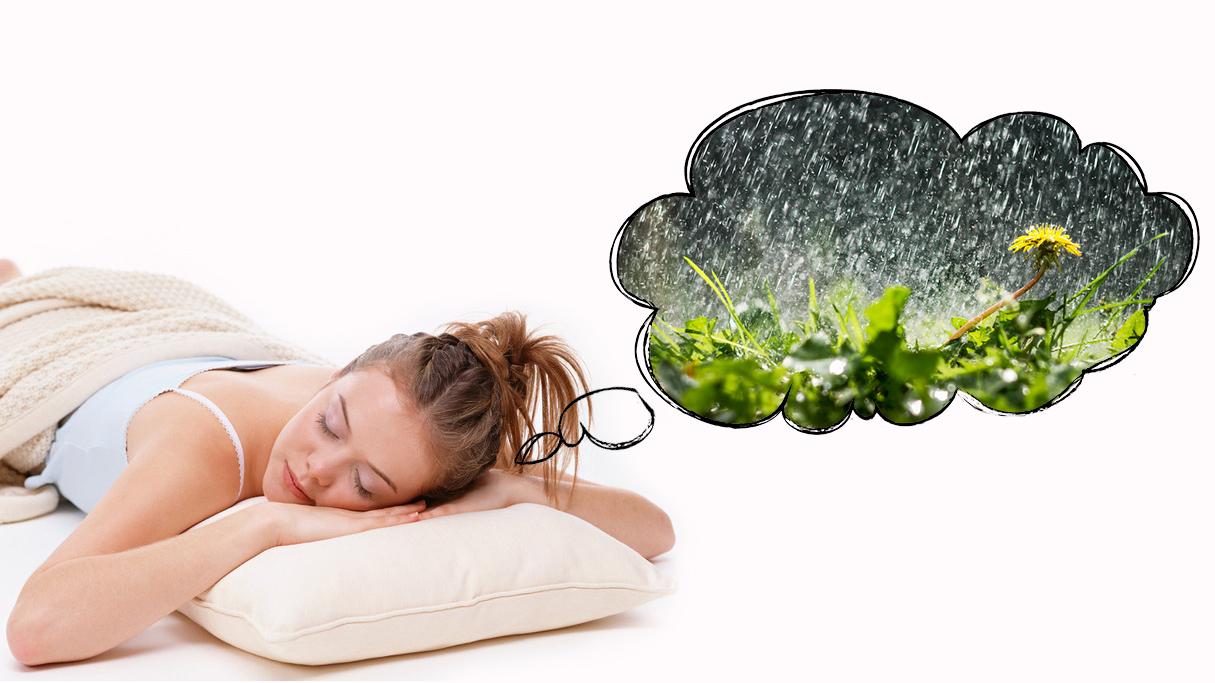 К чему снится дождь во сне женщине